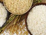 Рис - Rice - фото 1