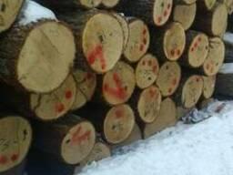 Заготовки дубовые - фото 2